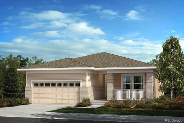 5958 N Odessa Street, Aurora, CO 80019 (MLS #1588801) :: Neuhaus Real Estate, Inc.