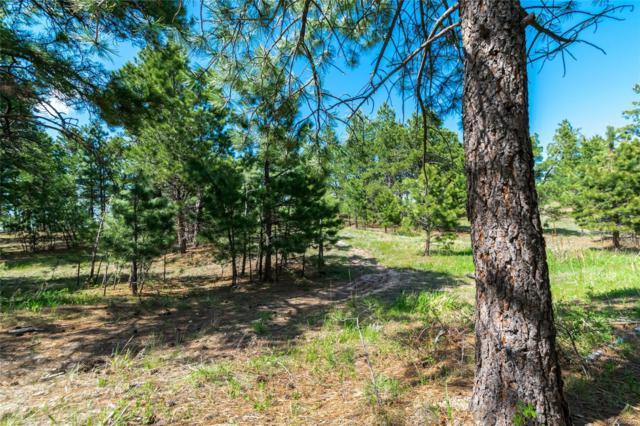 18925 Hilltop Pines Path, Monument, CO 80132 (#1590877) :: James Crocker Team