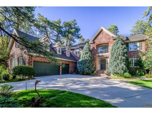 466 Lorraway Drive, Castle Rock, CO 80108 (MLS #1593885) :: 8z Real Estate