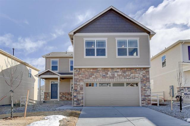 5998 High Timber Circle, Castle Rock, CO 80104 (#1598078) :: The HomeSmiths Team - Keller Williams