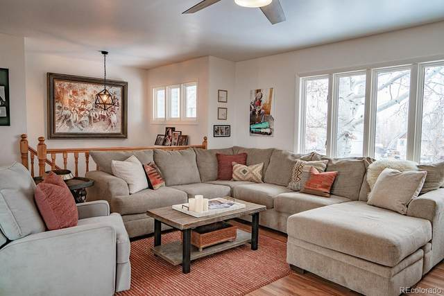 409 High Meadow Court, Hayden, CO 81639 (#1600113) :: Finch & Gable Real Estate Co.