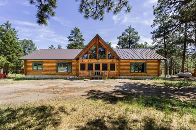 20295 Teacup Grove, Peyton, CO 80831 (MLS #1601025) :: 8z Real Estate