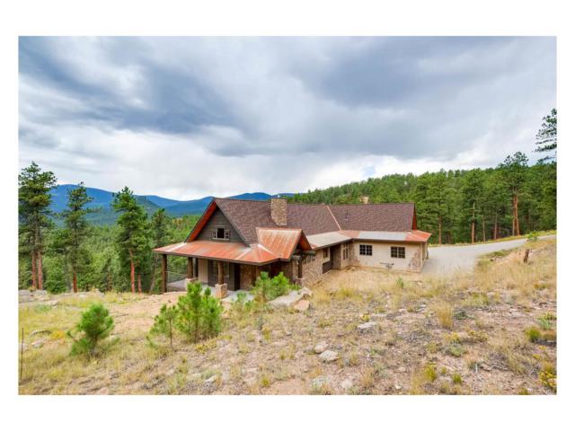 121 Holmes Gulch Way, Bailey, CO 80421 (MLS #1602087) :: 8z Real Estate