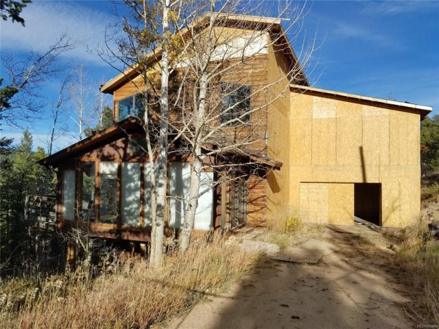 99 Pinecliff Trail, Nederland, CO 80466 (MLS #1606949) :: 8z Real Estate