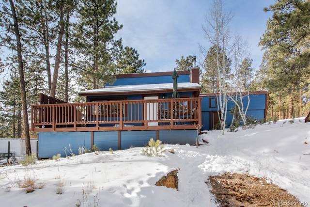 177 Gray Street, Bailey, CO 80421 (#1607615) :: Realty ONE Group Five Star
