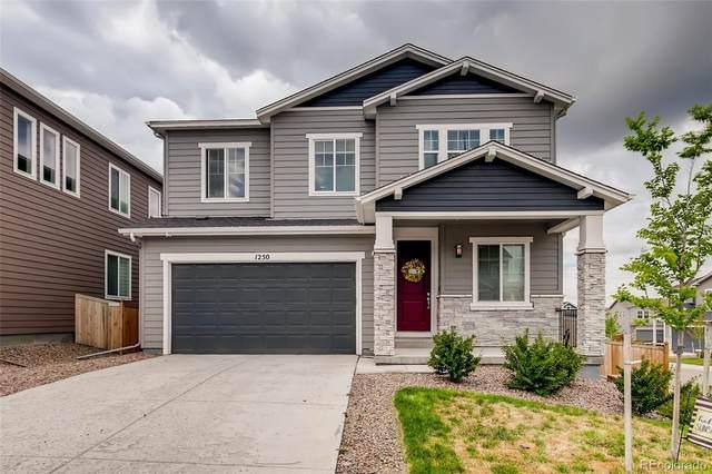 1250 Basalt Ridge Loop, Castle Rock, CO 80108 (#1614541) :: The Colorado Foothills Team | Berkshire Hathaway Elevated Living Real Estate