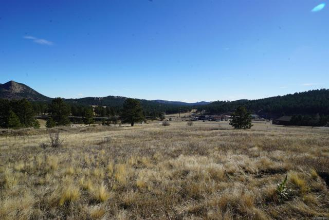 356 Bull Dogger Road, Bailey, CO 80421 (MLS #1615454) :: 8z Real Estate