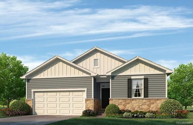 919 Birchdale Court, Windsor, CO 80550 (#1618515) :: The Pete Cook Home Group