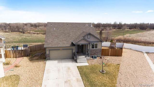 2930 Avocado Avenue, Greeley, CO 80631 (MLS #1619937) :: 8z Real Estate