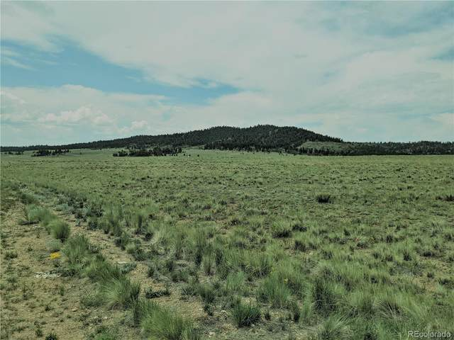 584 Cherokee Trail, Hartsel, CO 80449 (MLS #1623991) :: Bliss Realty Group
