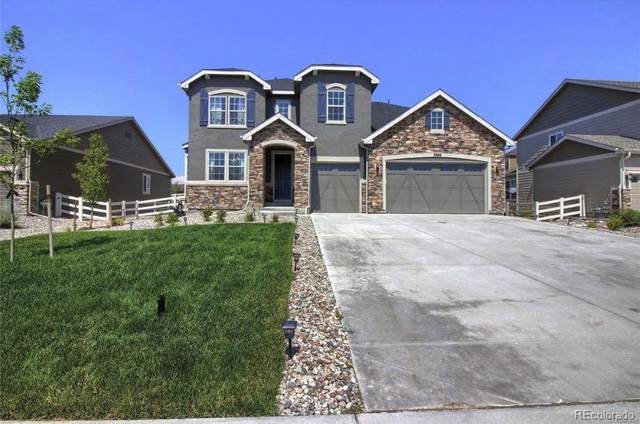 5889 Golden Field Lane, Castle Rock, CO 80104 (#1624779) :: Briggs American Properties