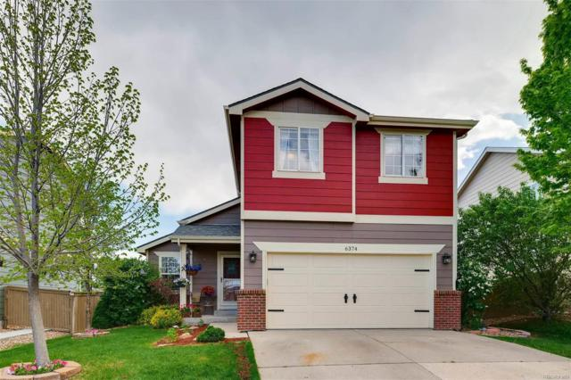 6374 Millbridge Avenue, Castle Rock, CO 80104 (#1627758) :: Bicker Realty
