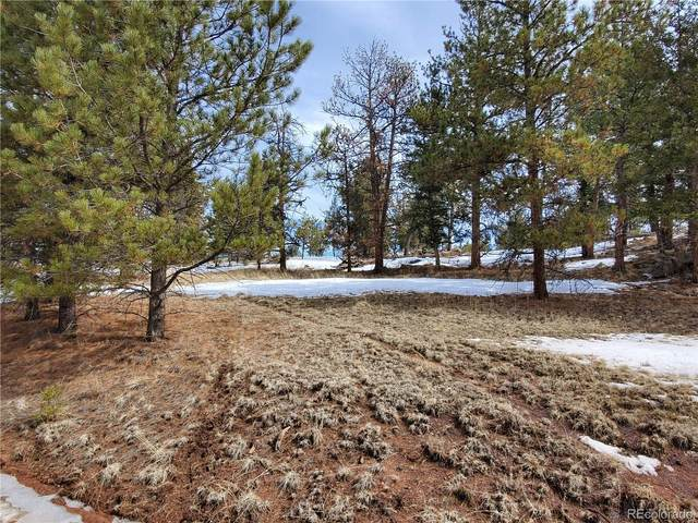 803 Arapahoe Drive, Florissant, CO 80816 (MLS #1630413) :: 8z Real Estate