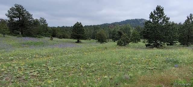 Thomas Trail, Canon City, CO 81212 (#1631315) :: milehimodern
