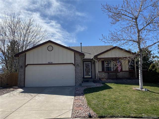 9839 Bucknell Court, Highlands Ranch, CO 80129 (#1633065) :: The Peak Properties Group
