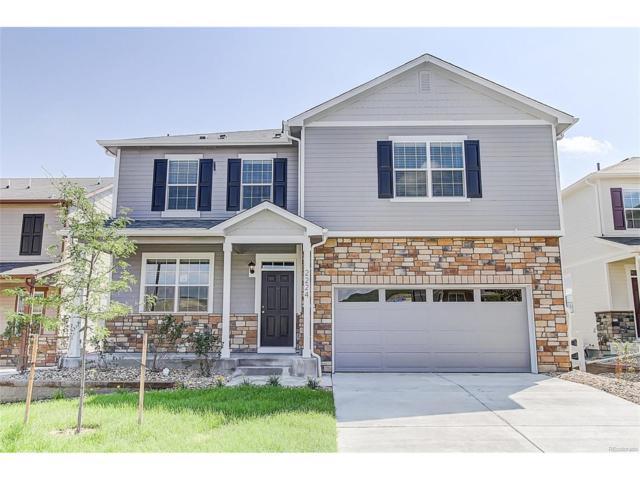 5718 Echo Park Circle, Castle Rock, CO 80104 (#1633884) :: Colorado Home Finder Realty