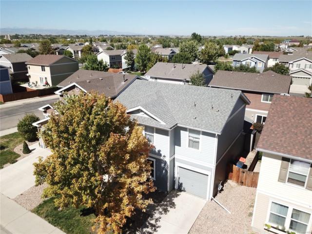 10429 Durango Place, Longmont, CO 80504 (MLS #1634088) :: 8z Real Estate