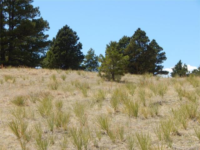 27095 Pine Vista Circle, Kiowa, CO 80117 (#1637092) :: The Pete Cook Home Group