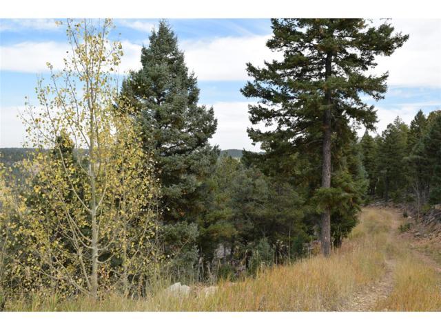12808 Piano Meadows Drive, Conifer, CO 80433 (MLS #1637247) :: 8z Real Estate