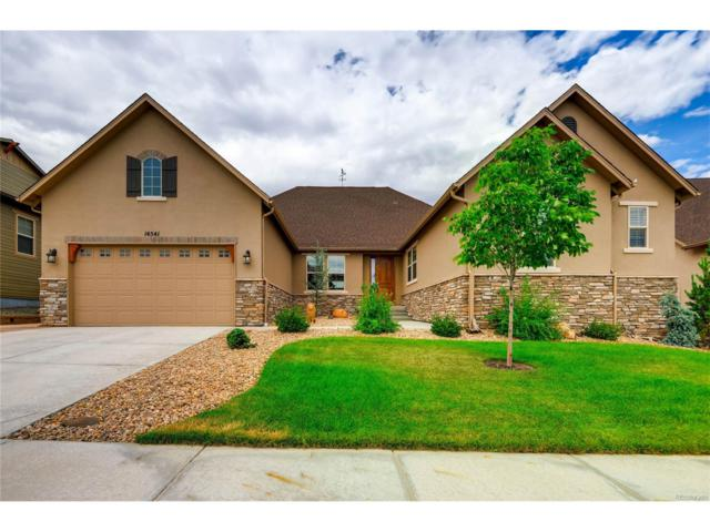 14541 Saddlebred Avenue, Parker, CO 80134 (MLS #1640291) :: 8z Real Estate