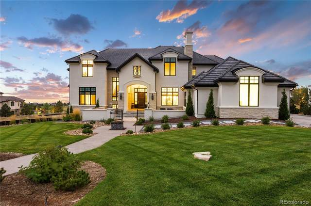 10969 Skydance Drive, Highlands Ranch, CO 80126 (#1644905) :: The Brokerage Group