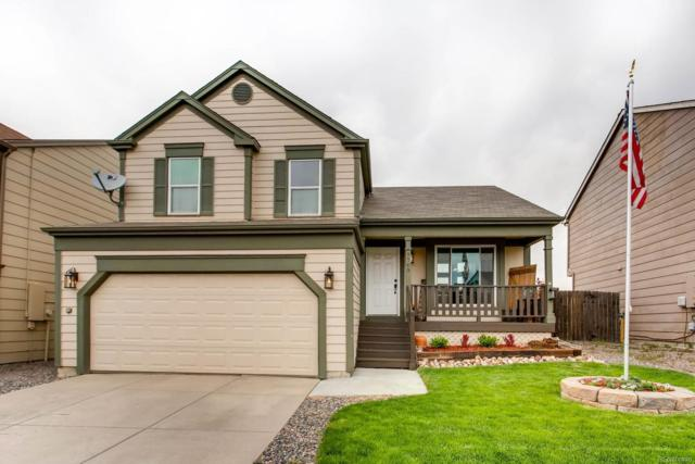 9765 Fairwood Street, Littleton, CO 80125 (#1645541) :: The Pete Cook Home Group