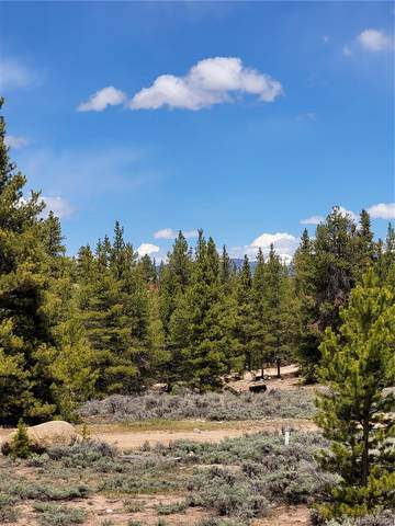 48 Juniper Drive, Twin Lakes, CO 81251 (#1646180) :: The DeGrood Team