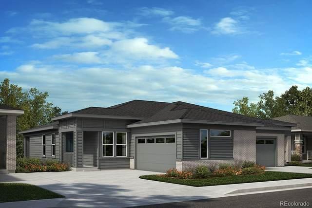 3897 Happy Hollow Drive, Castle Rock, CO 80104 (#1649759) :: Wisdom Real Estate