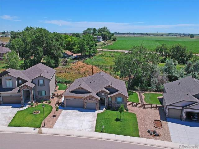4351 Shepardscress Drive, Johnstown, CO 80534 (#1650043) :: James Crocker Team