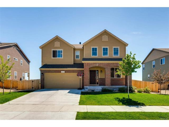 111 Stewart Way, Erie, CO 80516 (MLS #1650135) :: 8z Real Estate