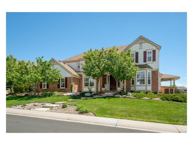 10329 Brookhollow Circle, Highlands Ranch, CO 80129 (MLS #1657128) :: 8z Real Estate
