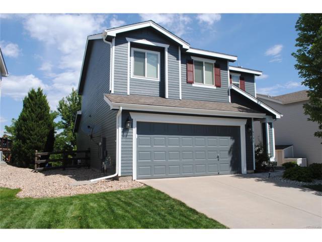 9795 Marmot Ridge Circle, Littleton, CO 80125 (#1658925) :: The Sold By Simmons Team