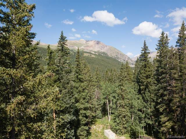 553 Nuthatch Drive, Alma, CO 80420 (MLS #1659371) :: Bliss Realty Group