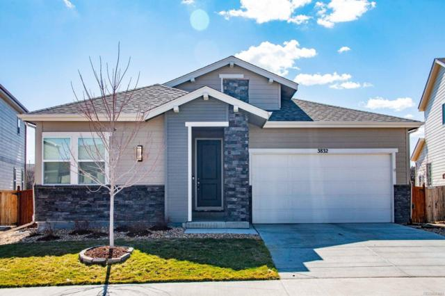 3832 Ghost Dance Drive, Castle Rock, CO 80108 (#1662270) :: Compass Colorado Realty