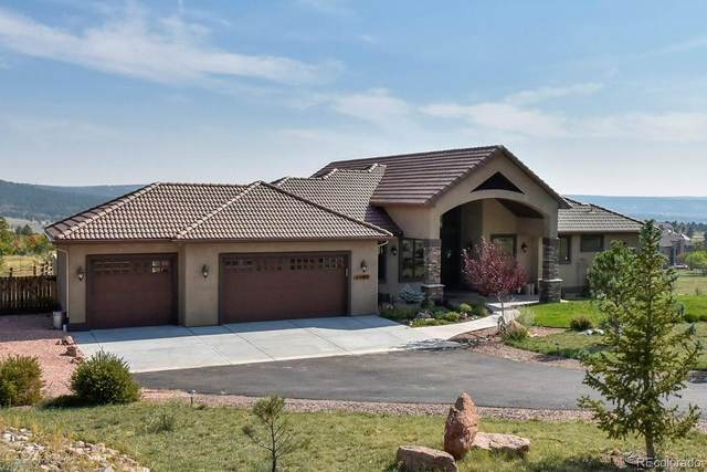 4590 Red Rock Ranch Drive, Monument, CO 80132 (#1662357) :: The Harling Team @ Homesmart Realty Group