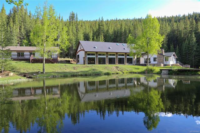 616 Peaceful Valley Lane, Idaho Springs, CO 80452 (#1671613) :: 5281 Exclusive Homes Realty