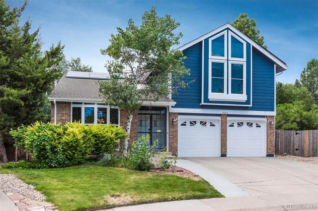 10306 King Court, Westminster, CO 80031 (MLS #1671701) :: 8z Real Estate