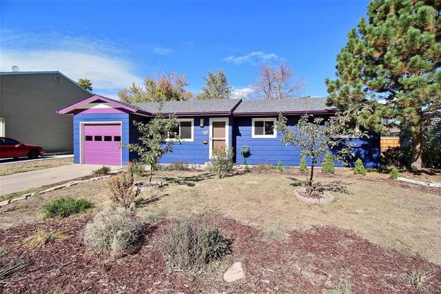 14 Rose Court, Windsor, CO 80550 (#1671817) :: The Griffith Home Team