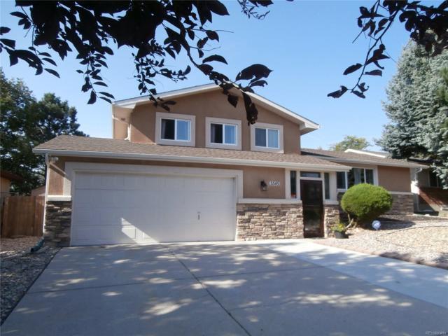 5585 Whimsical Drive, Colorado Springs, CO 80917 (#1671982) :: Bring Home Denver