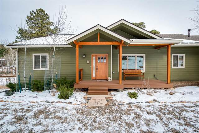 23845 Navajo Road, Indian Hills, CO 80454 (#1673661) :: The Healey Group