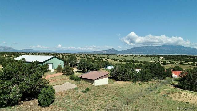 818 County Road 321.3, Walsenburg, CO 81089 (MLS #1677556) :: Bliss Realty Group