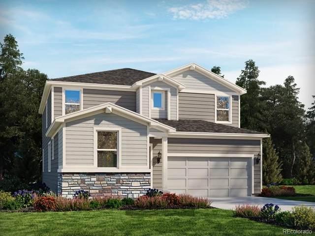 628 Silver Rock Trail, Castle Rock, CO 80104 (MLS #1677662) :: 8z Real Estate