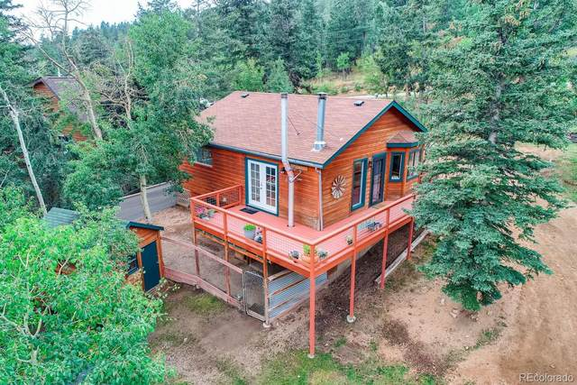 937 S Pine Drive, Bailey, CO 80421 (#1677805) :: The Artisan Group at Keller Williams Premier Realty