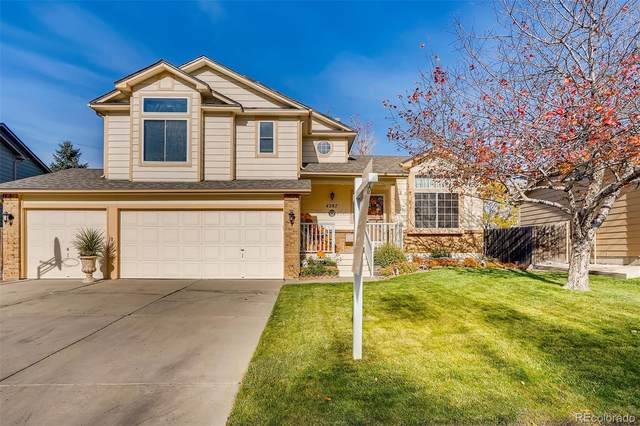 4287 Ashcroft Avenue, Castle Rock, CO 80104 (#1678084) :: The Margolis Team