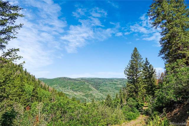 1750 County Road 14, Meeker, CO 81641 (MLS #1678157) :: Clare Day with Keller Williams Advantage Realty LLC