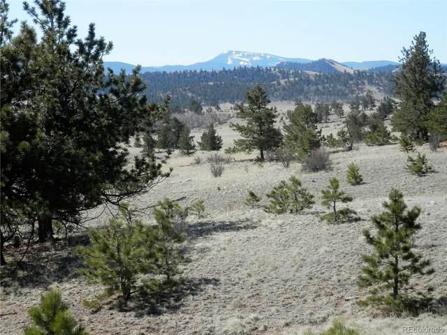 Lot 5934 Running Bear Road, Hartsel, CO 80449 (#1678494) :: Briggs American Properties