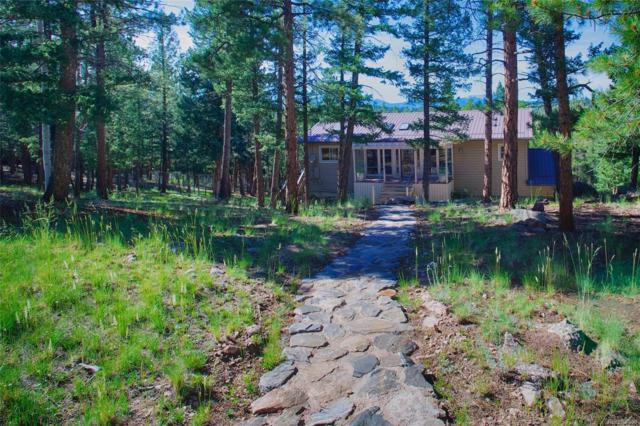 105 Swift Court, Bailey, CO 80421 (MLS #1679430) :: 8z Real Estate