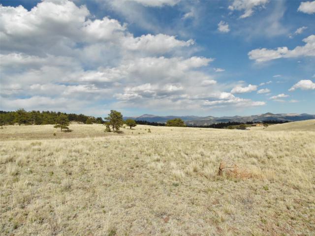 78 Cobb Lane, Guffey, CO 80820 (#1683157) :: Wisdom Real Estate