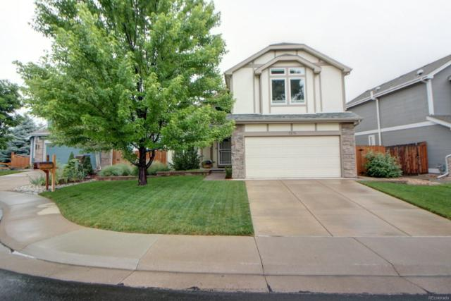 7375 W 97th Place, Westminster, CO 80021 (#1684317) :: Sellstate Realty Pros