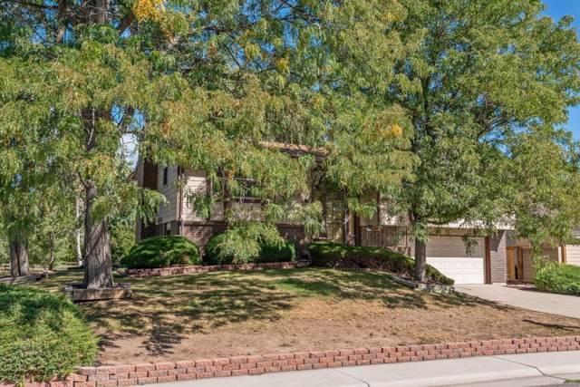8091 W Quarto Drive, Littleton, CO 80128 (#1684354) :: The HomeSmiths Team - Keller Williams